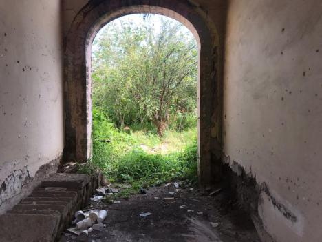basura inmueble abandonado abasolo (7)