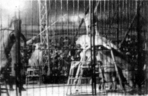 circo irapuato (12)