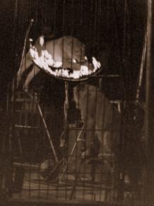 circo irapuato (20)