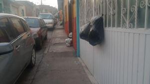basura abasolo (4)