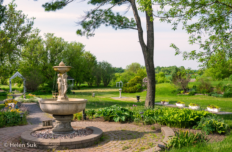 the gardens at the waring house
