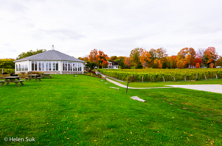 waupoos estates winery in prince edward county
