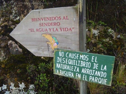 """""""Welcome to the trail 'Water and Life'"""" / """"We don't cause imbalance of nature by throwing garbage in the park."""""""