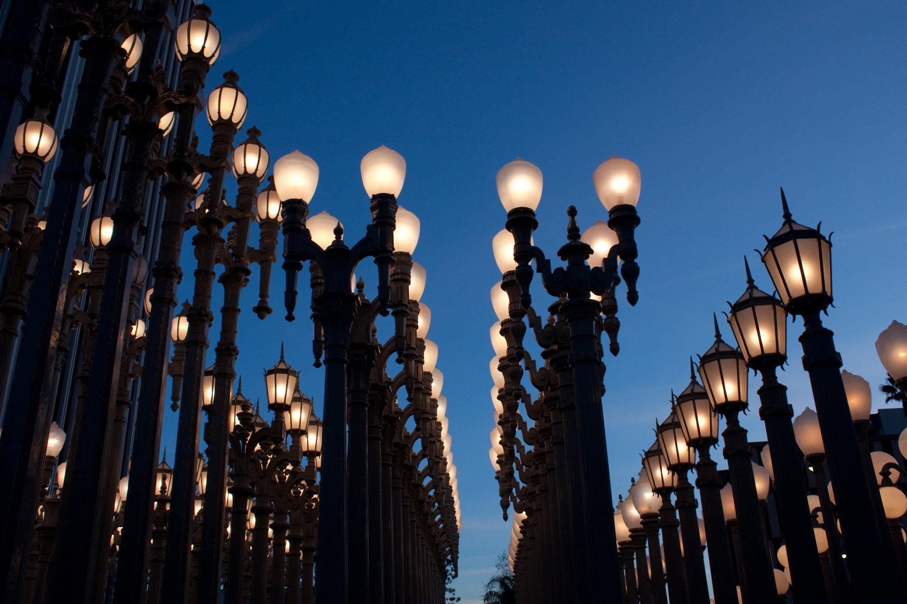 10 Places Every Tourist Should Visit in Los Angeles