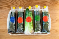 line of seaweed wrapped burrito
