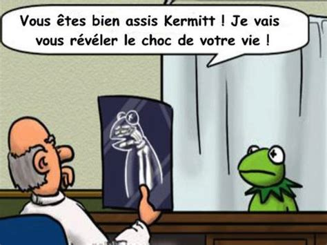 Le vérité dite à Kermitt la grenouille