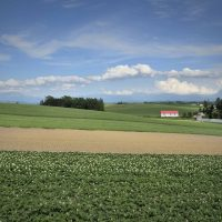 新規就農者必見! 農業所得トップ100農家の経営を分析してみた
