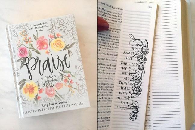 praise-bible