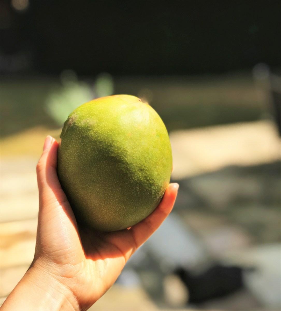 Mexican Mango Salsa Bowl