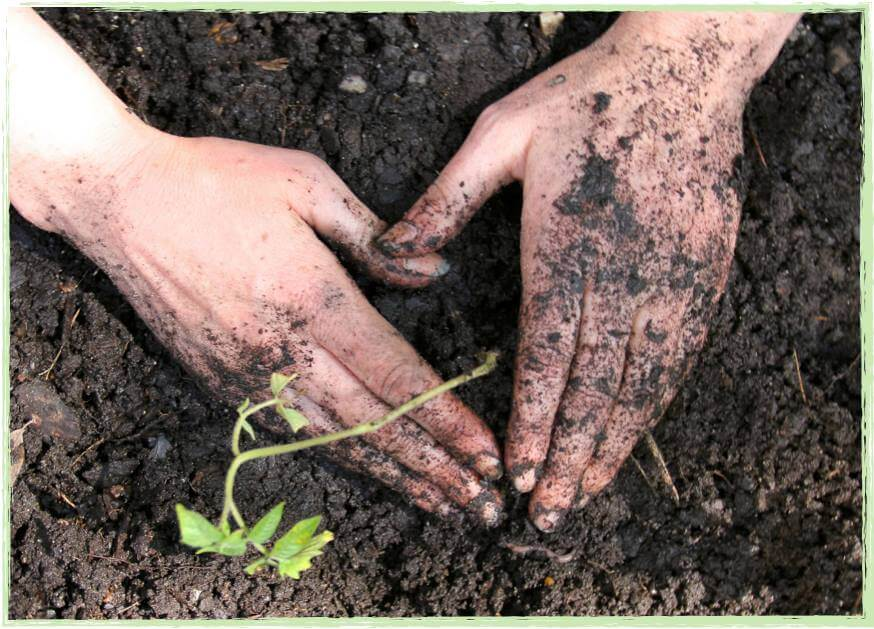 Mothers' Earth–Reflections in the Garden