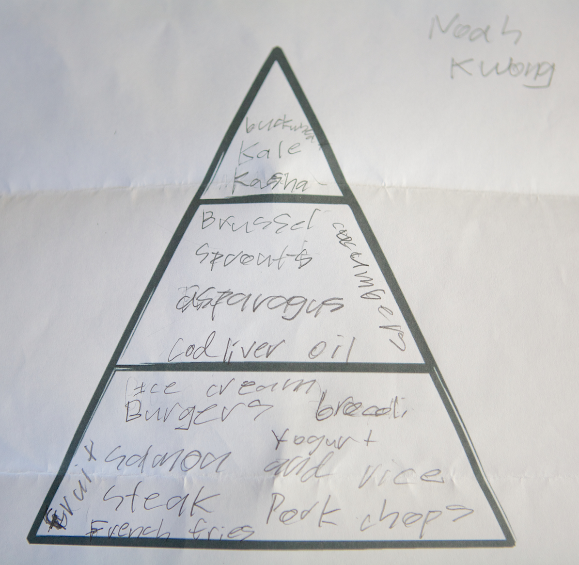 Real Children S Food Pyramids