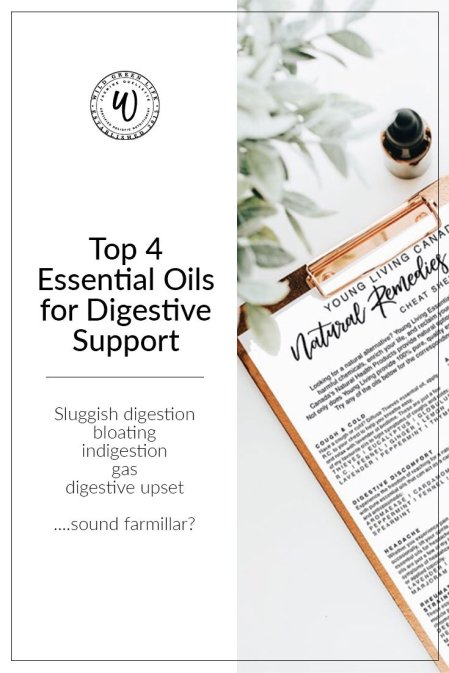 Top 4 Essential oils for digestive support: natural remedies for sluggish digestion, bloating, gas, indigestion, and digestive upset.