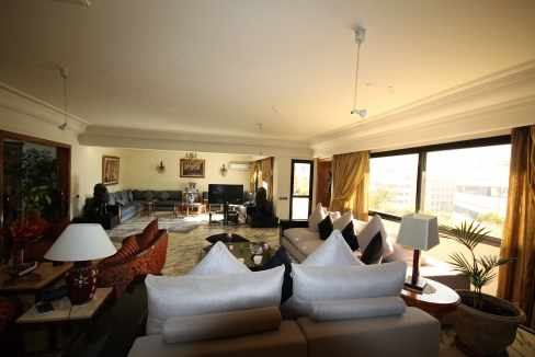 coeur-de-racine-luxueux-penthouse-avec-terrasse-266-m2_1360