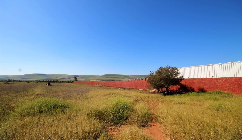a-vendre-ferme-d-une-superficie-4-2-hectares-019