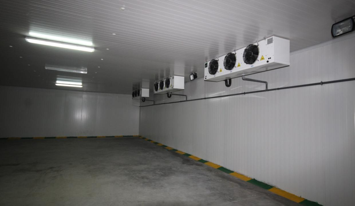 unite-industrielle-moderne-de-stockage-froid-et-de-distribution-a-vendre-location-possible-014