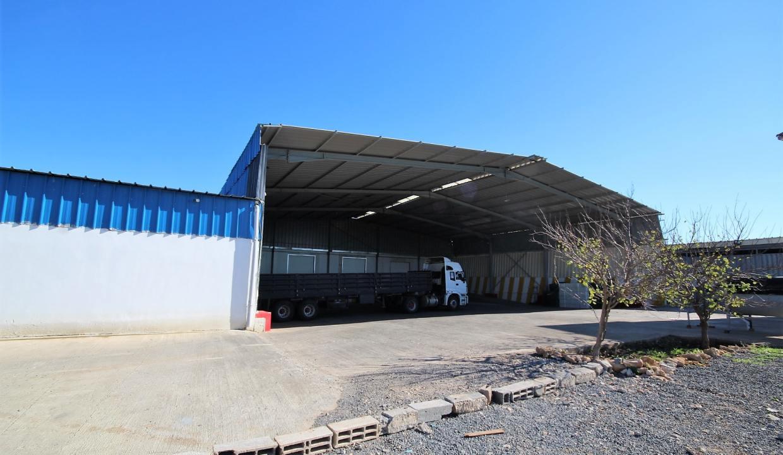 unite-industrielle-moderne-de-stockage-froid-et-de-distribution-a-vendre-location-possible-029