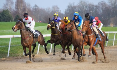 Off to the Races: The Story of Local Horse Racing Comes to Down County Museum