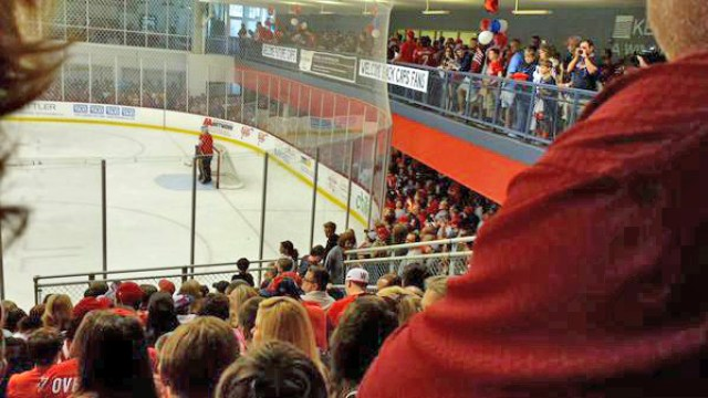 washington-capitals-development-camp-fans-2015