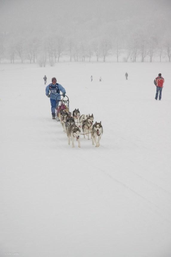 Schlittenhunderennen Februar 2006 (23 von 26)