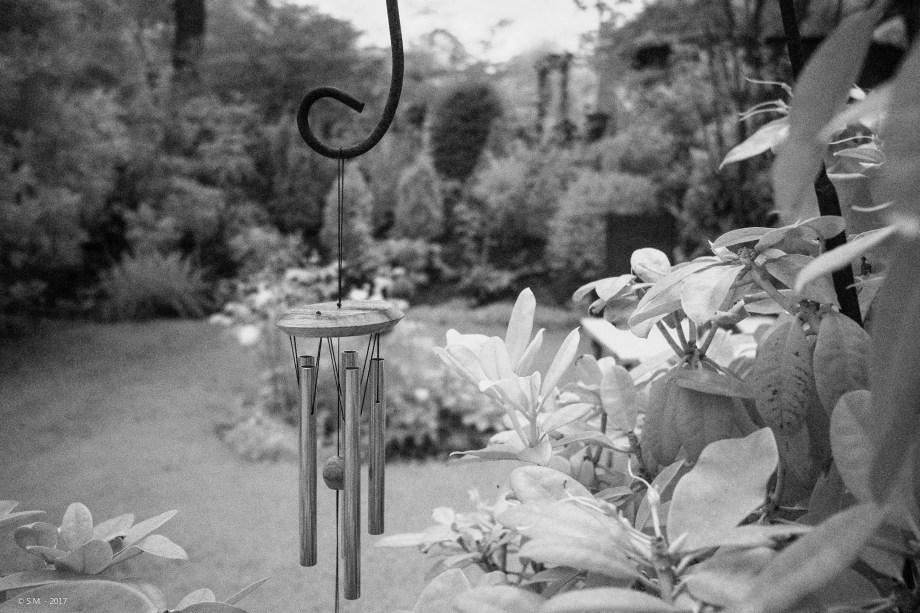Das Grün im Garten – Infrarotfotografie mit der Fujifilm X-T2