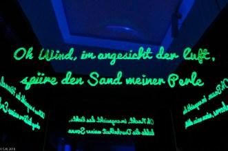 EVI-Lichtungen_180128_702