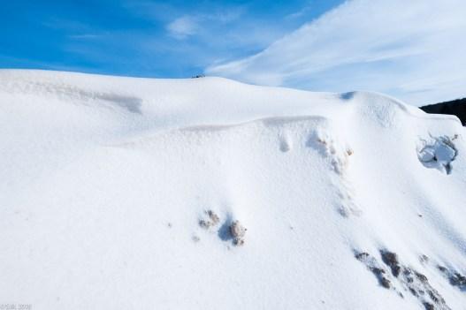 Beuster_Winter (11 von 26)