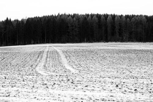 Beuster_Winter (21 von 26)