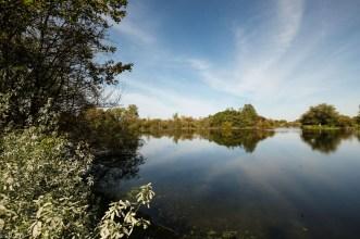 Koldinger See (1 von 29)