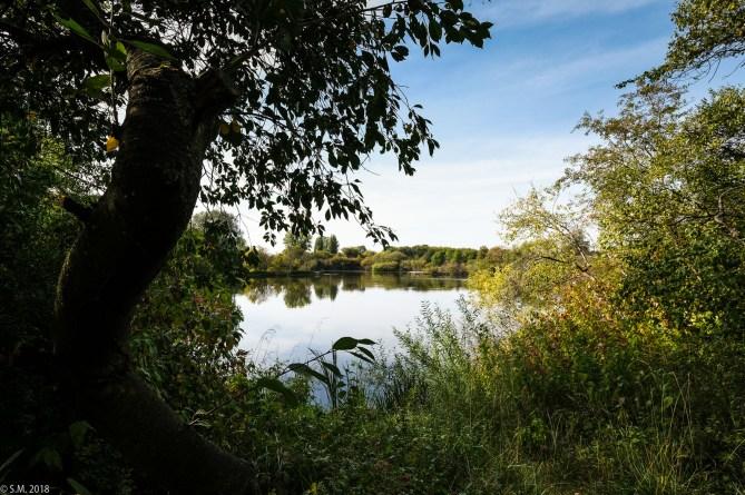 Koldinger See (2 von 29)