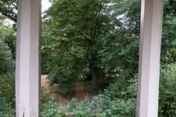 Wrisbergholzen (39 von 58)