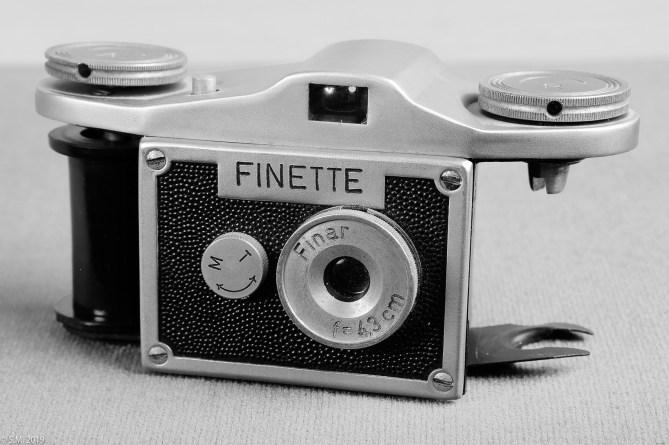 Finette_4665 (1 von 22)