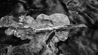 Kalte Beuster - Eis_16
