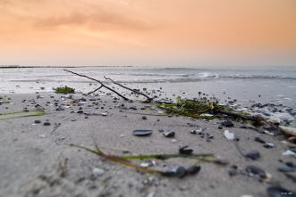 Winter am Strand _21