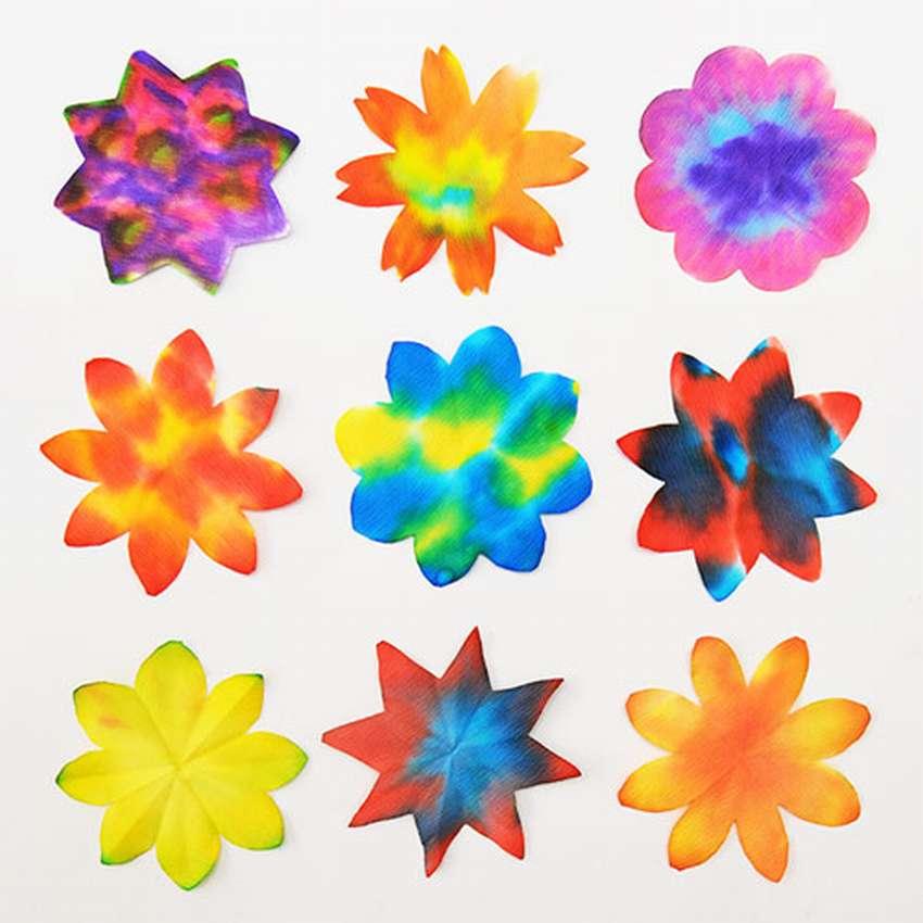 Λουλούδια φίλτρου καφέ