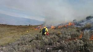 fuego guiado por tecnicos_opt