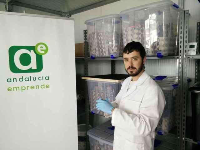 José Luis Sánchez Ávila, de la empresa Entosur Insects Farm, es uno de los emprendedores alojados en el CADE de Níjar.