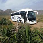 El servicio de autobús del Consorcio de Transporte a las playas de San José supera los 8.000 viajeros
