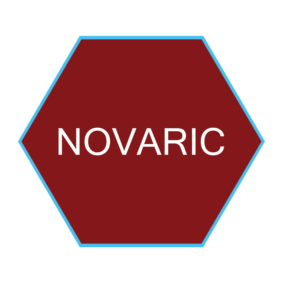 NOVARIC Recruitment Agency Logo