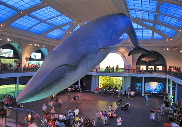 new-york-city-american-museum-of-natural-history