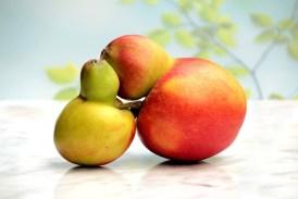 Jablka a jejich choroby