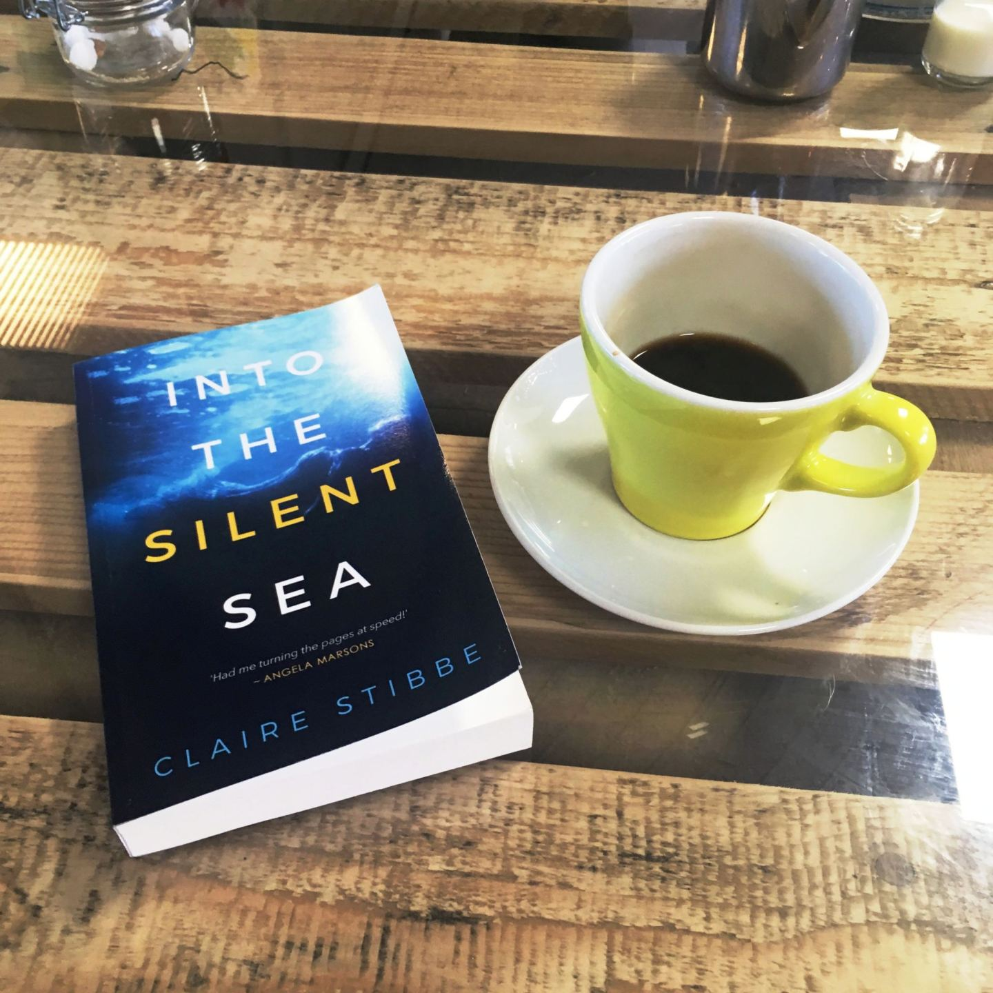 Into The Silent Sea; a truly sinister read
