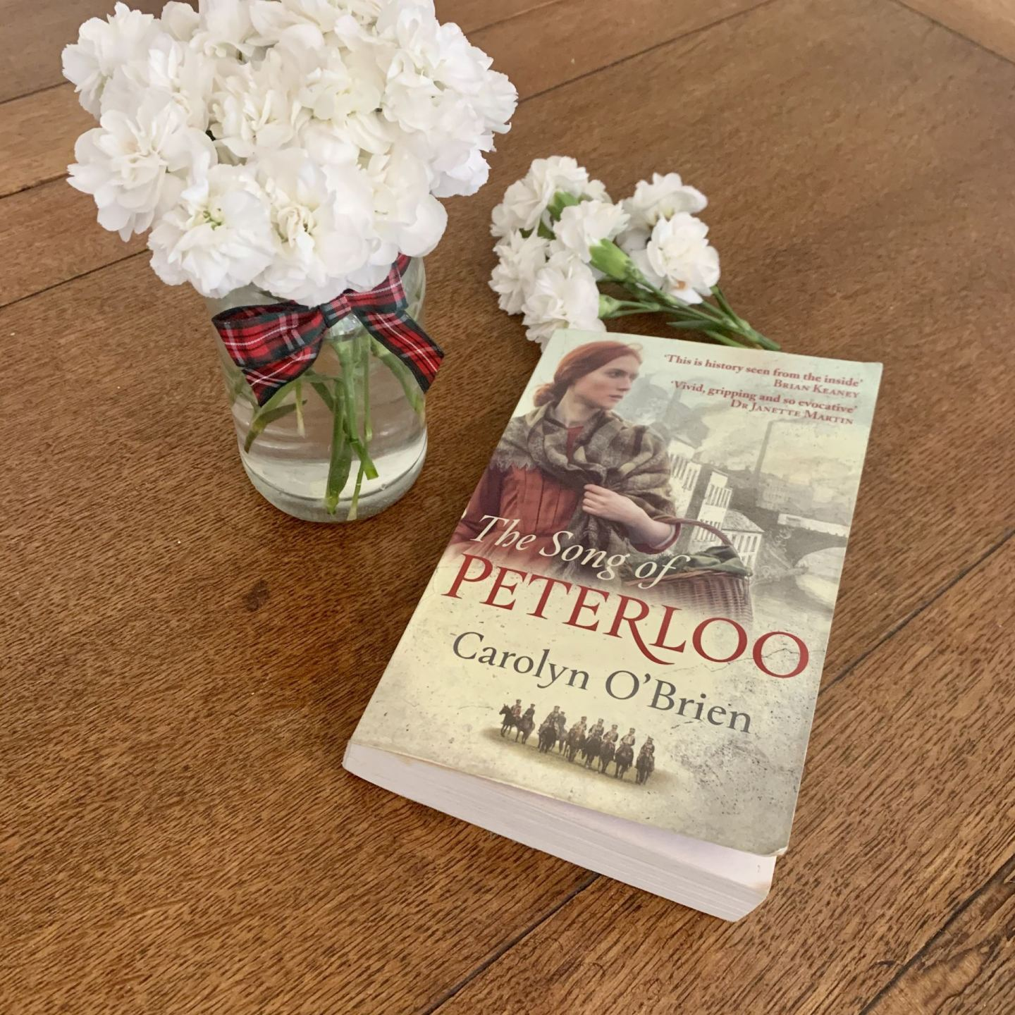 The Song of Peterloo; a powerful page turner