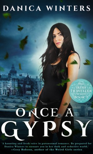 Mini Review – Once a Gypsy by Danica Winters
