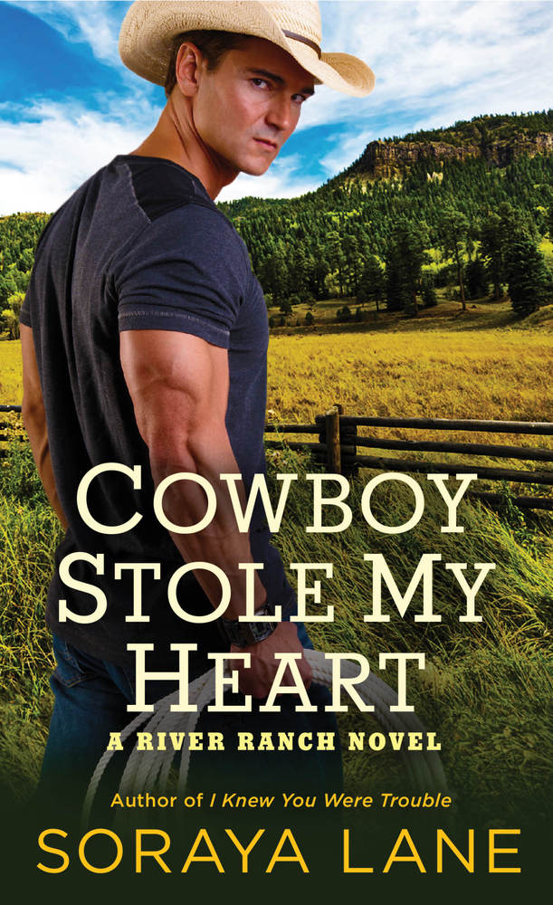 Review – Cowboy Stole My Heart by Soraya Lane