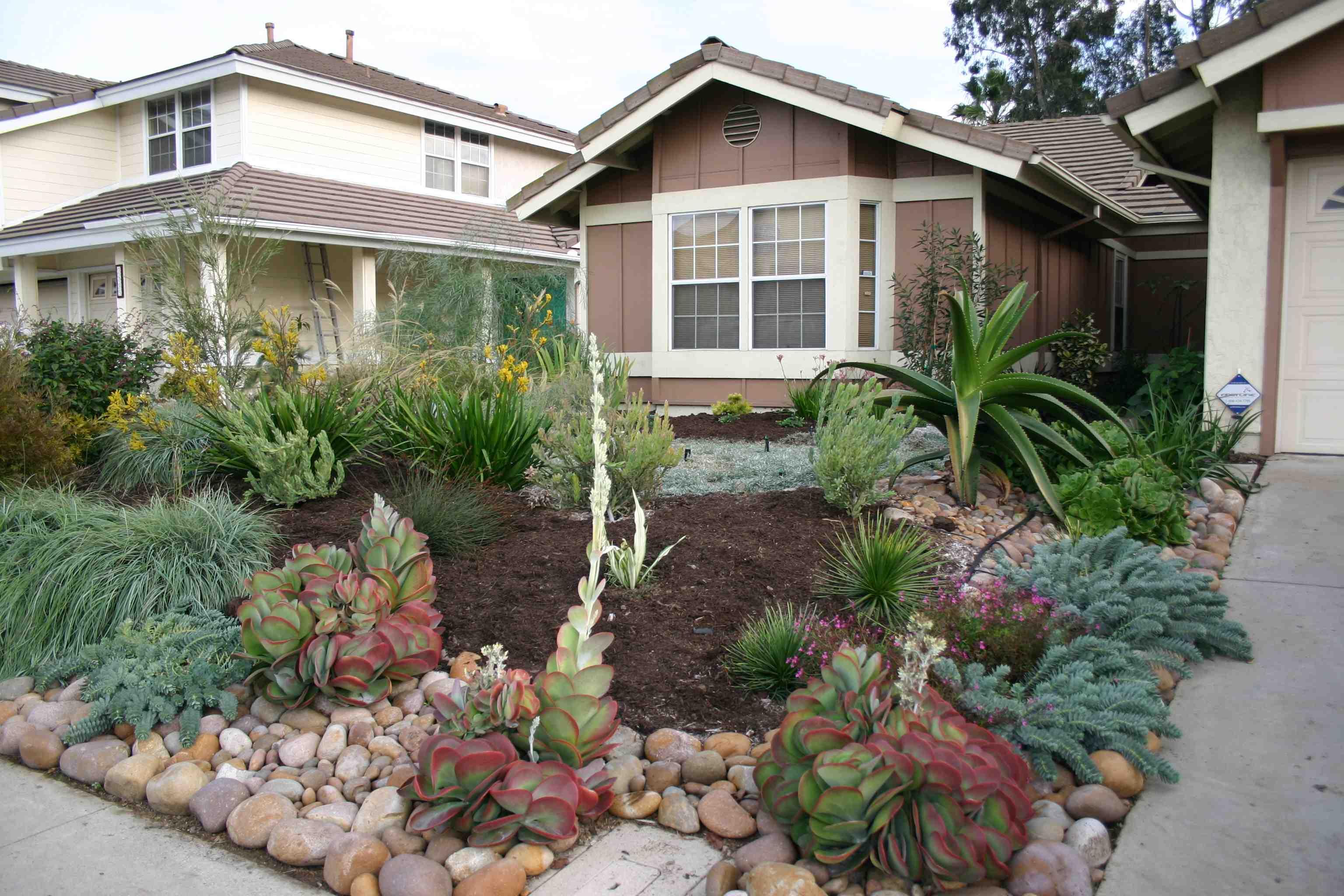 Serious Rebates Available for California Friendly ... on No Grass Garden Ideas  id=33068
