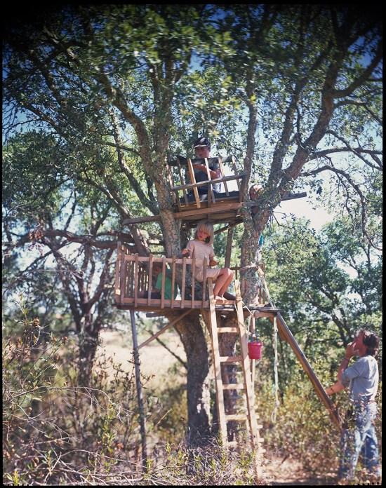 15 - Building tree house