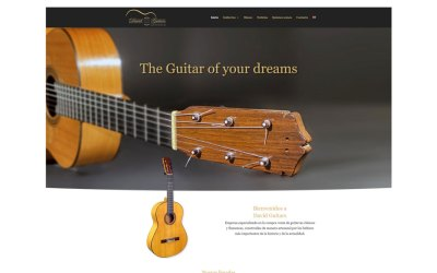 Web David Guitars
