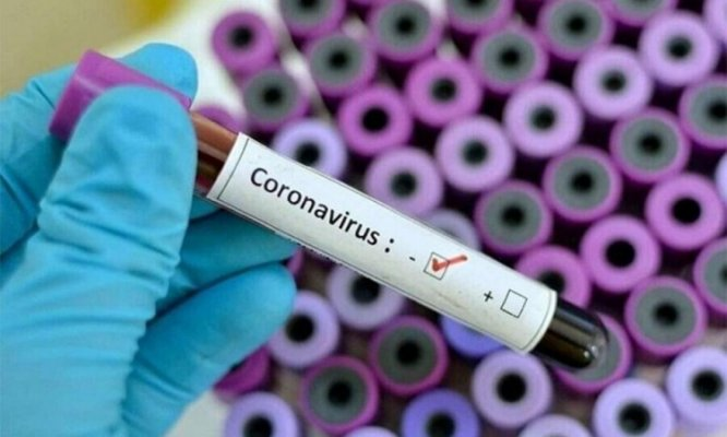 koronavirsu