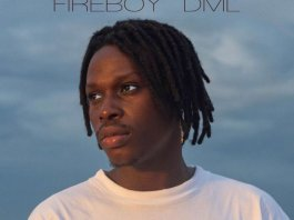 "Fireboy DML with the Best Debut Album in ""Laughter, Tears and Goosebumps"" - REVIEW"