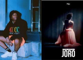 Wow! 'Joro' by Wizkid Leads Google Most-Searched Songs in 2019